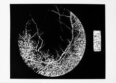 Retina3 (Federici Luca) Tags: blackandwhite bw art monochrome analog print pattern arte noiretblanc magic bn spell lith analogue magia alternativeprocess alternativephotography altprocess incantesimo altproc fotomeccanica lucafederici