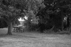 small moments of idealism (Satirenoir) Tags: park summer river virginia riversidepark picnictable mountvernontrail