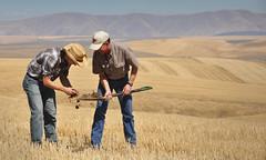 DavidBrewer-DC1 (NRCS Soil Health) Tags: conservation drylandfarming soilhealth