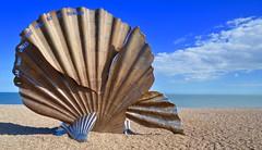 Scallop (gerard.whittle1) Tags: sea beach suffolk nikon flickr magic vivid maggie britten estrellas and benjamin scallop striking aldeburgh autofocus 7000 hambling thebestofmimamorsgroups greatshotss magicmomentsinyourlifelevel4