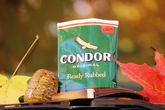 Condor & a cob (Matches2) Tags: condor corncobpipe pipesmoking pipestobaccos