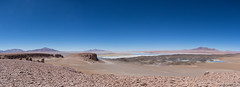 Laguna and Salar de Tara (Ralph Green) Tags: chile panorama southamerica rocks desert andesmountains atacamadesert antiplano salardetara lagunadetara