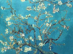 vangogh_branches_with_almond_blossom_1890 (Art Gallery ErgsArt) Tags: museum painting studio poster artwork gallery artgallery fineart paintings galleries virtual artists artmuseum oilpaintings pictureoftheday masterpiece artworks arthistory artexhibition oiloncanvas famousart canvaspainting galleryofart famousartists artmovement virtualgallery paintingsanddrawings bestoftheday artworkspaintings popularpainters paintingsofpaintings aboutpaintings famouspaintingartists