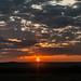 Sun downer Kenia