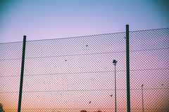 beyond (itawtitaw) Tags: above pink blue autumn light sunset sky color lines contrast fence outside evening colorful glow dusk smooth lookup clear gradient 28 f28 wideopen canoneos5dii canon2470mm28ii