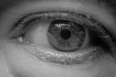 () Tags: macro eye occhio