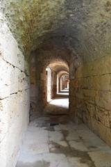 ITALICA (SEVILLA) (4) (DAGM4) Tags: espaa sevilla spain europa europe andalucia monumentos andalusia romanempire italica romanruins santiponce provinciadesevilla hispaniabaetica
