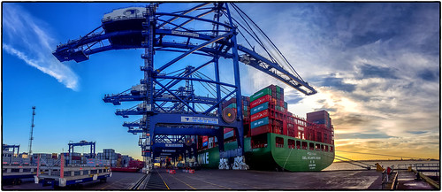 Container cranes at Felixstowe port