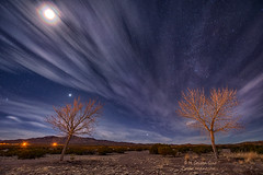 Lunar Corona (inlightful) Tags: sky night starrynight astronomy moon lunar luna lunarcorona corona halo clouds outdoors nature astrophotography astrolandscape trees baretrees nightsky winter stars venus rural southwest newmexicosocorrocounty