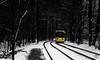 And off... (jannik.weber) Tags: berlin tram winter snow ice cold freeze germany yellow selective photography nikon strasenbahn köpenick dunkel wald natur schnee frost black white bvg