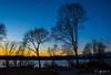 Trees (E. Aguedo) Tags: warwick pond trees sunset sky light long exposure water winter rhode island new england ngc dormancy