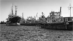 Binnenhaven Stellendam 3 (Rens Timmermans) Tags: canon5dmk3 tamronsp2470mmf28 havens holland blackwhite niksilverefexpro
