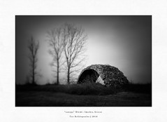 canopy (Teo Kefalopoulos - Art Photography) Tags: lensbaby lensbabyedge50