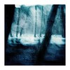 ...blue... (seba0815) Tags: ricohgrdiv grdiv bleachbypass nature woods forest trees blurred icm mood moved square light dark blue seba0815 walk winter atmosphere melancholy blur abstract