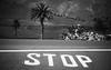 Beware the Tree (toletoletole (www.levold.de/photosphere)) Tags: fuji lanzarote xt2 bw sw trees bäume street strase streetscene strasenszene sky himmel clouds wolken sign stop markierung palmtree palme