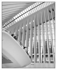 Inside the Oculus (GAPHIKER) Tags: worldtradecenter wtc oculus transportation hub newyorkcity nyc manhattan oneworldtradecenter santiagocalatrava calatrava