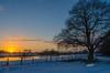 Sonnenuntergang_2 Januar 2017 (ubl57) Tags: ems sonnenuntergang emsland winter schnee eiche zaun januar