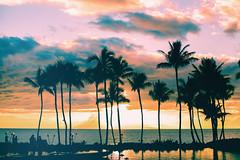All Tomorrow's Parties (Thomas Hawk) Tags: grandwailea hawaii maui wailea waldorfastoria waldorfastoriagrandwailea beach clouds humuhumu humuhumunukunukuapuaa palmtree restaurant sunset tree fav10 fav25