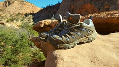 The places you take me... (Bubash) Tags: shoes hiking view break merrell feet canyonview zion nationalpark