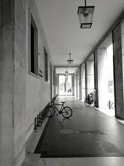 IMG_1482058532701 (Florindo Balkan) Tags: urban city contrast architecture blackandwhite wideangle noir mistery fog italy metaphysics