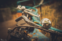 """ye olde bikes (Ipotx Photo """"""""Thanks for the 1000 followers!!!"""""""") Tags: bike old sigma 1750 f28 bokeh soft processed vignette yellow rust"""