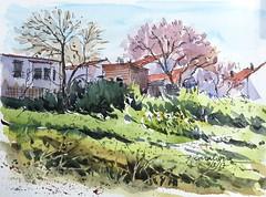 Casas de la Alcarria madrileña (P.Barahona) Tags: primavera almendro arquitectura casas hierbajos rural