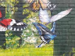 A piece of wonderland (Daniella Velings) Tags: butterflies magical streetart wallart painting graffiti eindhoven butterfly vlinders mural magisch