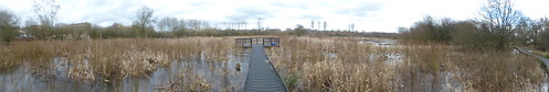 Kingsmead March - Local Nature Reserve - North Walls, Stafford - panoramic