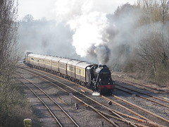 Centenary Special at West Ruislip (rcarpe2) Tags: train steam centenary ruislip 48151