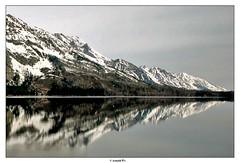 The Mirror Lake (Arnold Pouteau's) Tags: lake reflection mirror nationalpark cloudy may wyoming np teton tetons grandteton jennylake