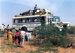 gao to niamey bus