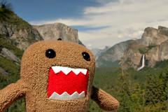 Little Domo at Yosemite (stickerbandit) Tags: canon 350d yosemite domo domokun 1022mm yosemitevalley tunnelview rowr littledomo