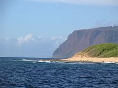 IMG_2555 (Dan F.) Tags: hawaii napalicoast bluedolphin kaua'i