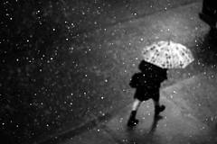 In the Rain (Mute*) Tags: bw toronto rain umbrella raining intherain bwdreams canonef85mmf18usm bokehsonicejuly bokehsonicejuly04