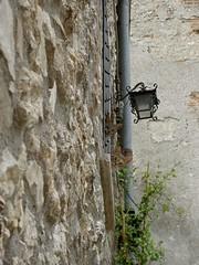 Gatti alla finestra / Cats at the window (Luigi Rosa has moved to Ipernity) Tags: italy cats window italia finestra gatti umbria herding notmycat cc300 cc200 cc100 italiamedievale teverina lugnano lugnanointeverina