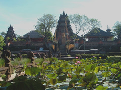 Temple Lilies (mbiramaker) Tags: bali indonesia temple lilies tropicalisland lilypond
