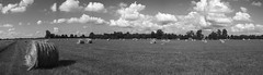 Hayfield (W.K.) Tags: summer white black outdoors farm missouri grandparents hay ozarks medlock dentcounty