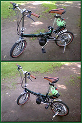 My new bicycle (dolphin_dolphin) Tags: green bicycle topv111 wow wonder phonecamera