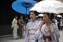 Summer in Gion 祇園の夏