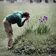 Dan at work (Cilest) Tags: vienna flowers iris people austria cilest kurt zentralfriedhof centralcemetery dan65