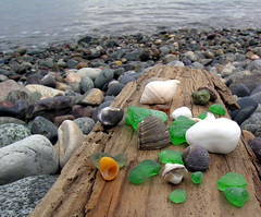 Treasures From the Sea (adamantine) Tags: ocean beach rocks stones massachusetts seashell seashore seaglass nahant sevenseastpotw