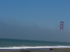 watching the golden gate disappear in the fog (Kimberly207) Tags: ocean sf california street beach fog sand san francisco baker pacific