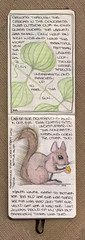 Squirrel & Plant - 2 of 3 (renmeleon) Tags: plant moleskine nature squirrel journal ria renmeleon renfolio