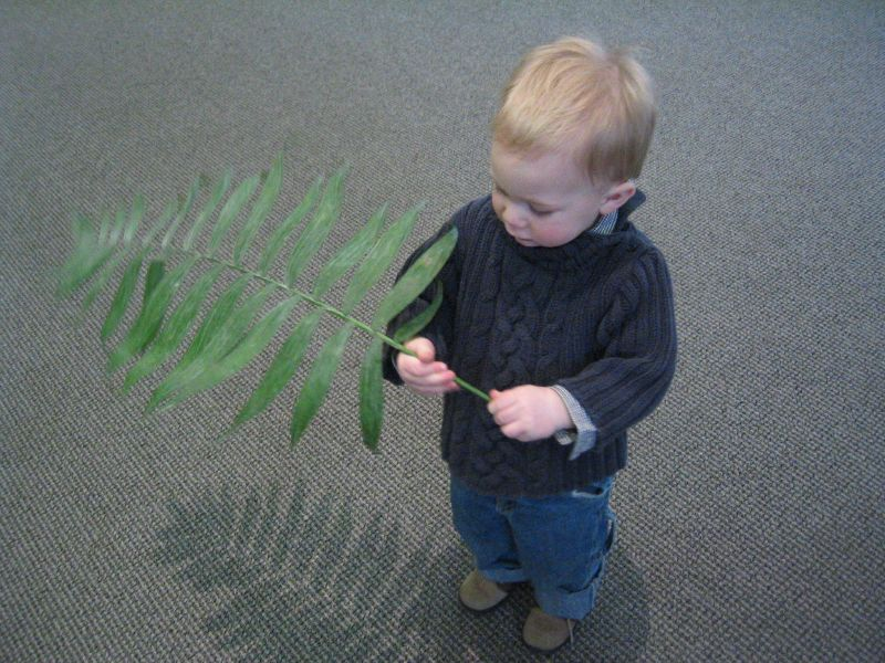 palm sunday.