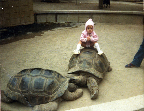 marci sitting on a turtle
