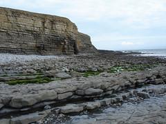 valewalk28.jpg (pwdin) Tags: sea cliff wales coast cymru cliffs vale glamorgan coastline welsh bro mor valeofglamorgan arfordir clogwyn morgannwg clogwyni cymreig bromorgannwg