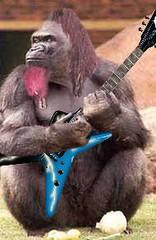 Dimechimp (alltheki) Tags: pink beard gorilla guitar dean dime dimebag lead pantera abbot darrel deanguitar