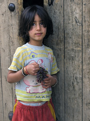 Yes! I'm happy with my grape :) (Farhang.) Tags: face kid village faces iran persia hamedan grape hamlet hamadan farhang farhanghaghighat humanrightsiniran varkaneh drtofiqmusivand musivand mousivand moosivand