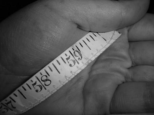 measure fatness