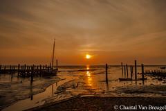 Cocksdorp Texel 2015 (Chantal van Breugel) Tags: strand texel zonsopkomst cocksdorp haven canon50d canon1585
